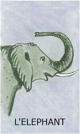 Oracle de L'éléphant dans ELEPHANT elephant
