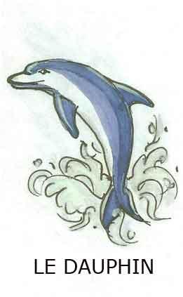 Message du Dauphin dans DAUPHIN le-dauphin